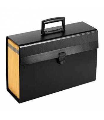 Expanding Case With Handle...